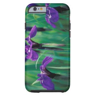 NA, USA, Alaska, Knight Island, Wild iris Tough iPhone 6 Case