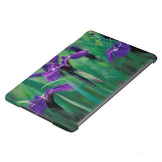 NA, USA, Alaska, Knight Island, Wild iris Case For iPad Air