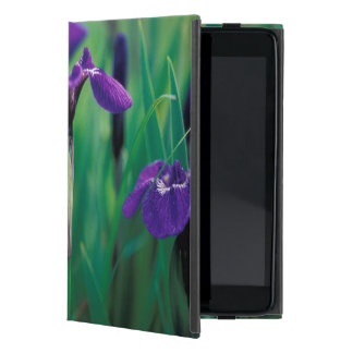 NA, USA, Alaska, Knight Island, Wild iris Case For iPad Mini