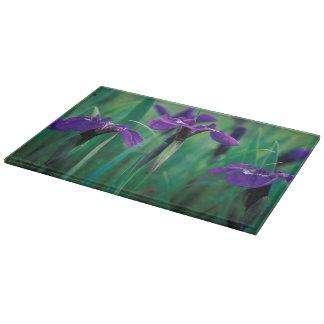NA, USA, Alaska, Knight Island, Wild iris Cutting Boards