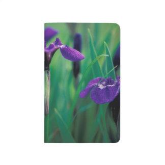 NA, USA, Alaska, Knight Island, Wild iris Journals