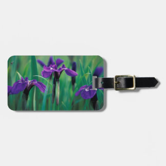 NA, USA, Alaska, Knight Island, Wild iris Luggage Tag