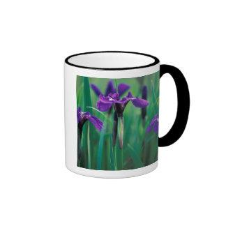NA, USA, Alaska, Knight Island, Wild iris Ringer Mug