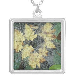 NA, USA, Alaska, Nancy Lake. Dew on spiderweb Square Pendant Necklace