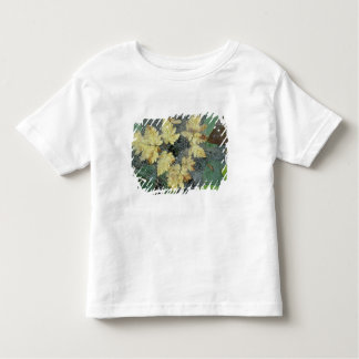 NA, USA, Alaska, Nancy Lake. Dew on spiderweb Toddler T-Shirt