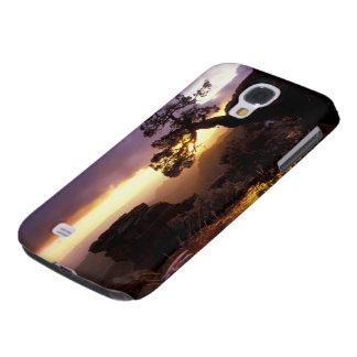 NA, USA, Arizona, Tucson, Sunset and lone Galaxy S4 Cases