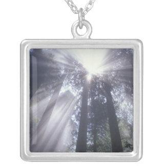 NA, USA, California. Del Norte Coast State 2 Silver Plated Necklace
