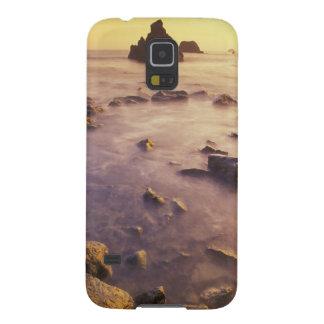 NA, USA, California, Northern California, Cases For Galaxy S5