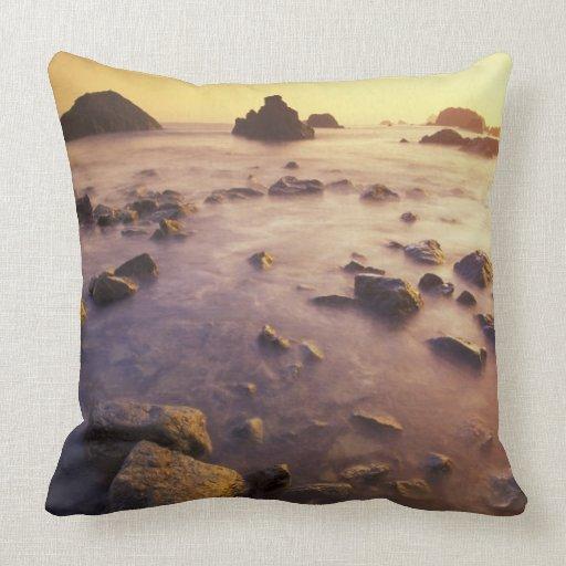 NA, USA, California, Northern California, Pillow