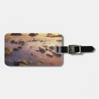 NA, USA, California, Northern California, Travel Bag Tags