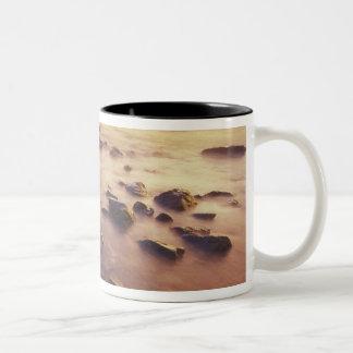 NA, USA, California, Northern California, Mug