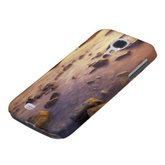 NA, USA, California, Northern California, Samsung Galaxy S4 Cases