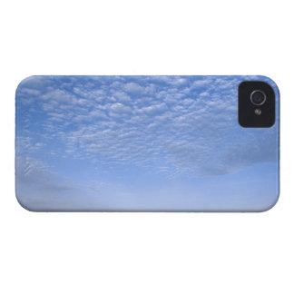 Na, USA, ID, Grangeville, Field of Canola Crop iPhone 4 Case-Mate Case