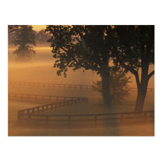 NA, USA, Kentucky. Foggy sunrise on Kentucky Postcard