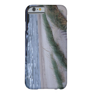 NA, USA, Michigan, Berrien County, St. Joseph, Barely There iPhone 6 Case