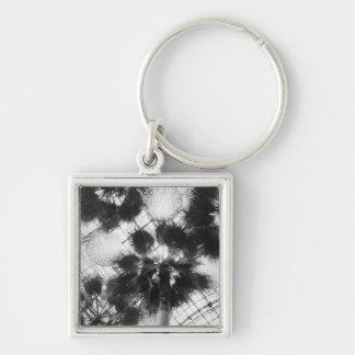 NA, USA, New York, New York City. Palm trees in Silver-Colored Square Key Ring