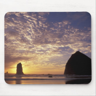 NA, USA, Oregon, Oregon Coast, Canon Beach with Mouse Pad