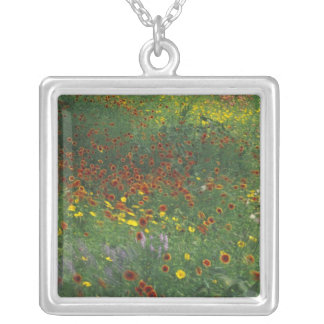 NA, USA, Texas, east of Devine, Coreopis and Square Pendant Necklace