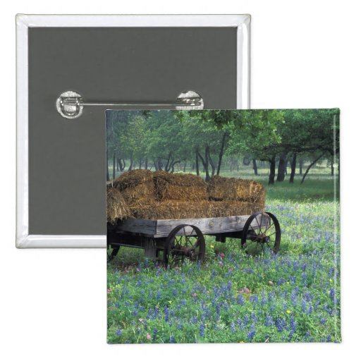 NA, USA, Texas, east of Devine, Old wagon in Pin