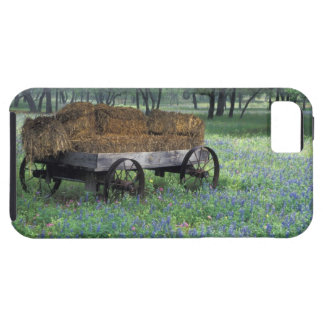 NA, USA, Texas, east of Devine, Old wagon in Case For The iPhone 5