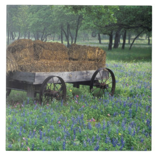 NA, USA, Texas, east of Devine, Old wagon in Large Square Tile
