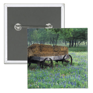NA USA Texas east of Devine Old wagon in Pin