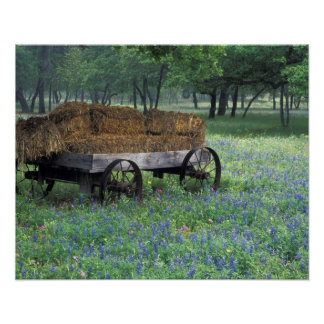 NA, USA, Texas, east of Devine, Old wagon in Poster