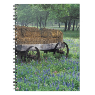 NA, USA, Texas, east of Devine, Old wagon in Spiral Notebooks