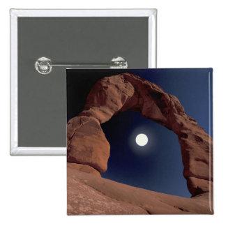 NA USA Utah Arches National Park Delicate Pins