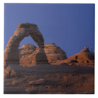 NA, USA, Utah, Arches National Park. Delicate Large Square Tile