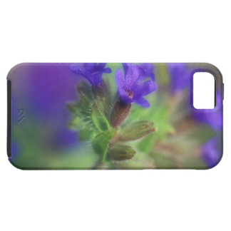 NA, USA, Washington, Eastern Washington. Wild iPhone 5 Cover