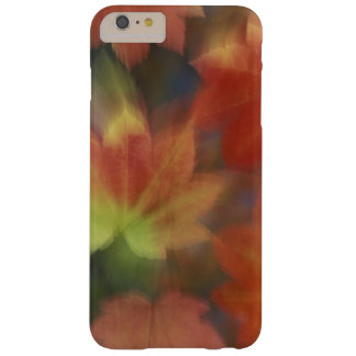 NA, USA, Washington, Issaquah, Vine maple Barely There iPhone 6 Plus Case