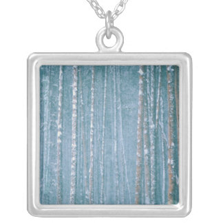 NA, USA, WY. Snowy winter scene among Square Pendant Necklace