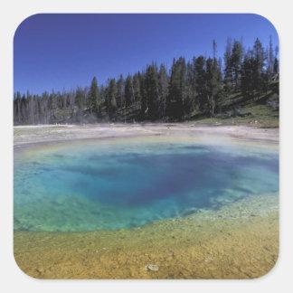 NA, USA, Wyoming, Yellowstone National Park. 2 Square Sticker