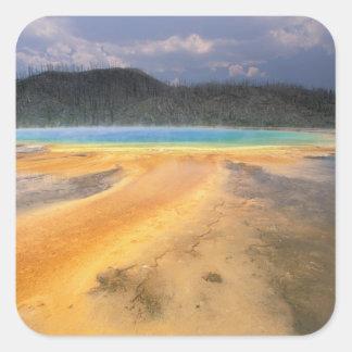 NA, USA, Wyoming, Yellowstone NP, Grand Square Sticker