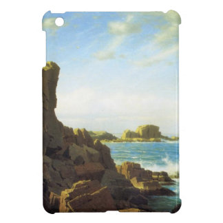 Nahant Rocks | Sea Shore with rocks and waves Cover For The iPad Mini
