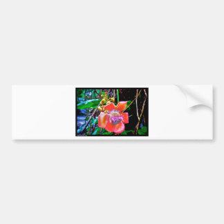 Naik Michel Photography Hawaii. Wallpapers images Bumper Sticker