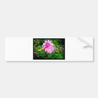 Naik Michel Photography - Hortensia House Garden P Bumper Sticker