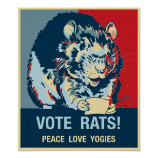 Name Your PosterVote Rats! Poster