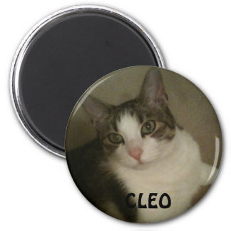 Named Pet Photo Magnet