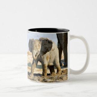 Namibia, Africa: Baby African Elephant Two-Tone Coffee Mug