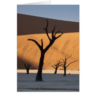 Namibia, Namib Desert, Sossusvlei, Card