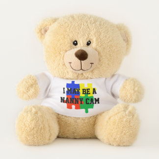 Nanny Camera Lovey Child Guardian Teddy Bear