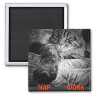 """Nap or Work? Kitty Says """"Nap"""" Square Magnet"""