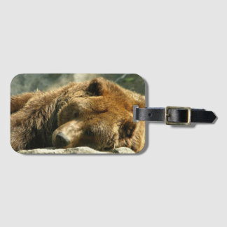 Nap Time Bear Luggage Tag