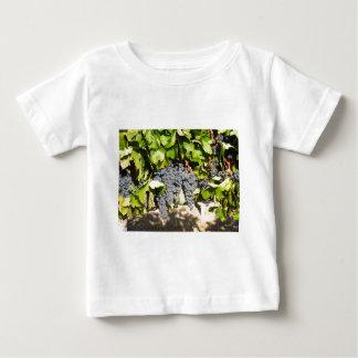 Napa Grapes Baby T-Shirt