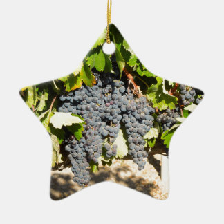Napa Grapes Ceramic Ornament