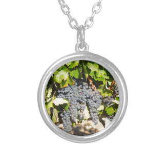 Napa Grapes Silver Plated Necklace