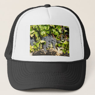 Napa Grapes Trucker Hat