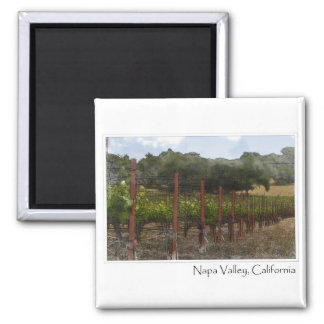 Napa Valley California Grape Vineyard Magnet